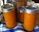 Karl's Apricot Quick Jam