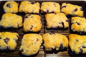 Karl's Blueberry English Scones