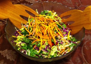 Karl's Colorful Asian Coleslaw