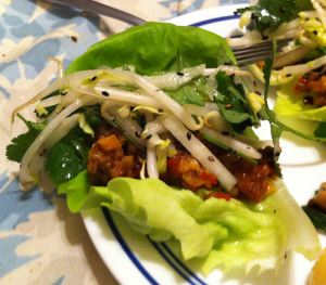 "Karl's California Fusion Asian Pork ""Tacos"""