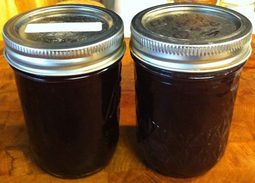Karl's Thomcord Grape Jam