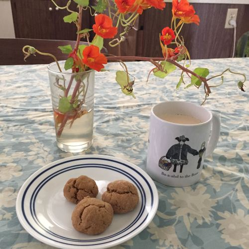 Chai with Jan's Cardamom Triple Ginger Cookies