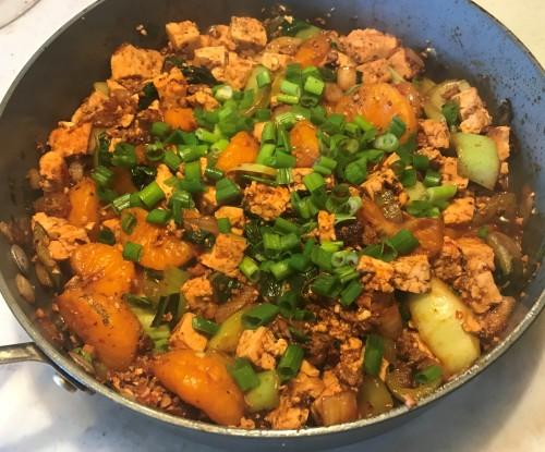 Karl's Mandarin Mapo Tofu